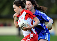 101023 - Inch Rovers v Ballymacarbry - Munster Club Final replay